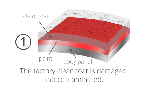Graphic of a damaged clear coat which EcoGreen's paint correction services can fix.