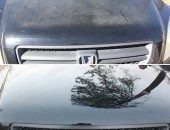 Front of Honda Before & After Paint Correction Services